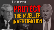 Congress Must Secure Matthew Whitaker's Recusal and Protect the Mueller Investigation
