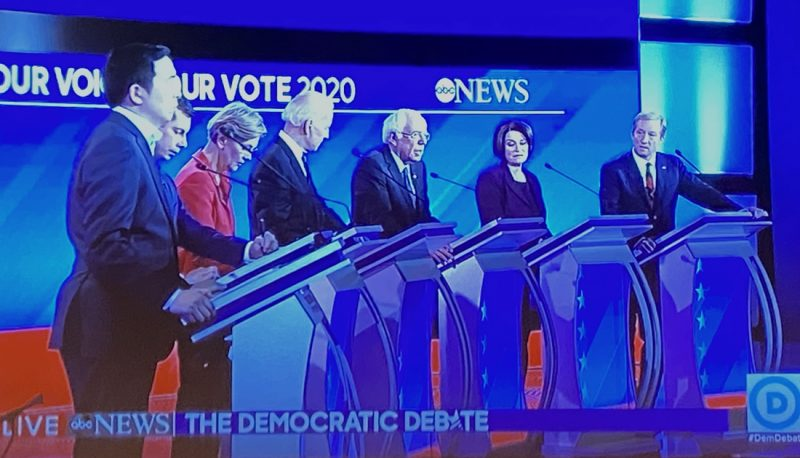 Image for Democratic Presidential Candidates Address Courts and Abortion at February Debate